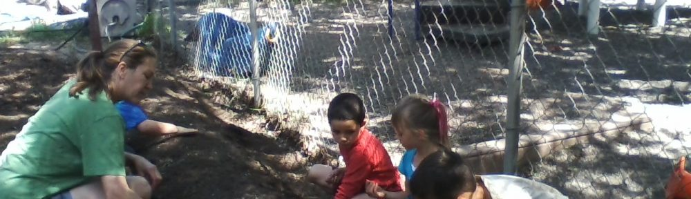 Planting beans at our garden day in April 2016